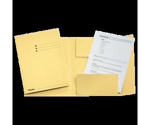 Dosar tip plic Esselte, carton, A4, galben